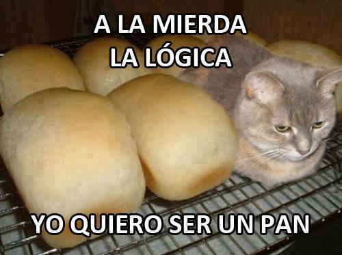 a la mierda la logica yo quiero ser un pan
