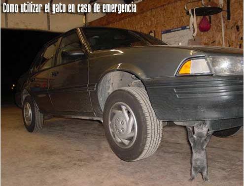 como utilizar el gato en caso de emergencia